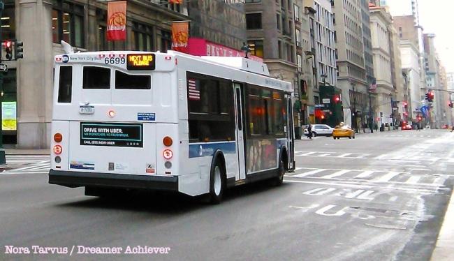 DreamerAchieverNYCbus