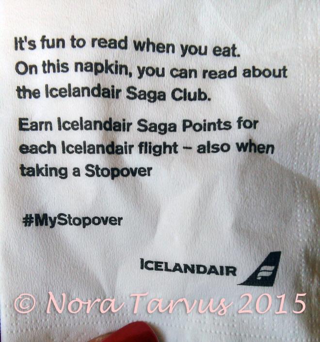 IcelandAirDreamerAchieverNapkin
