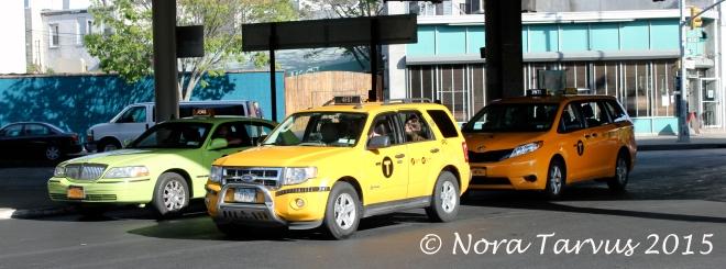 TaxisinAllColorsDreamerAchieverNYC