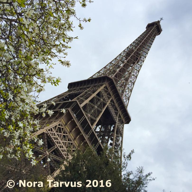 ParisDay1Spring251