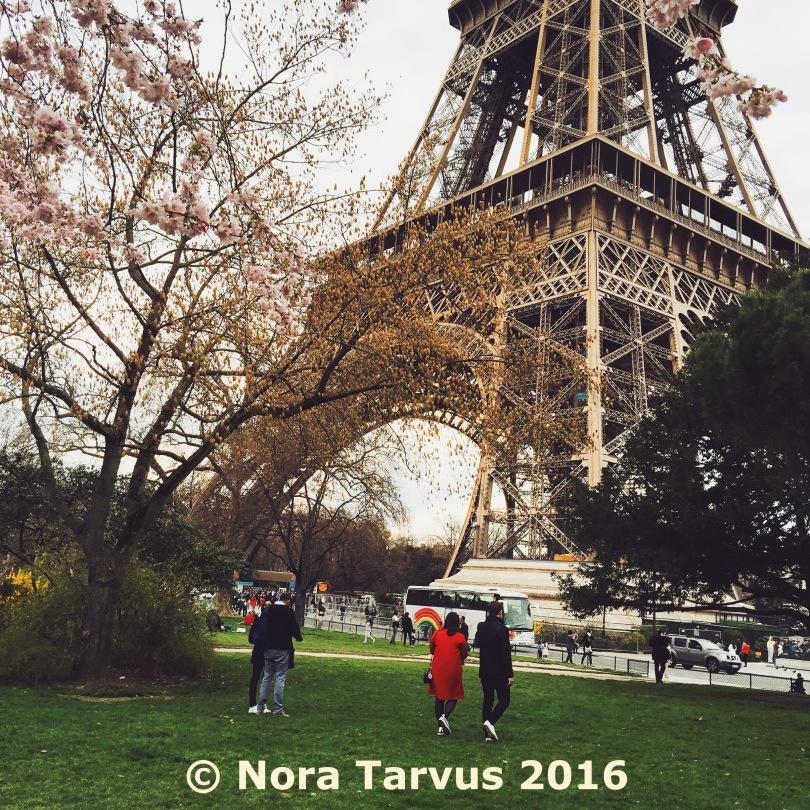 ParisDay1Spring353