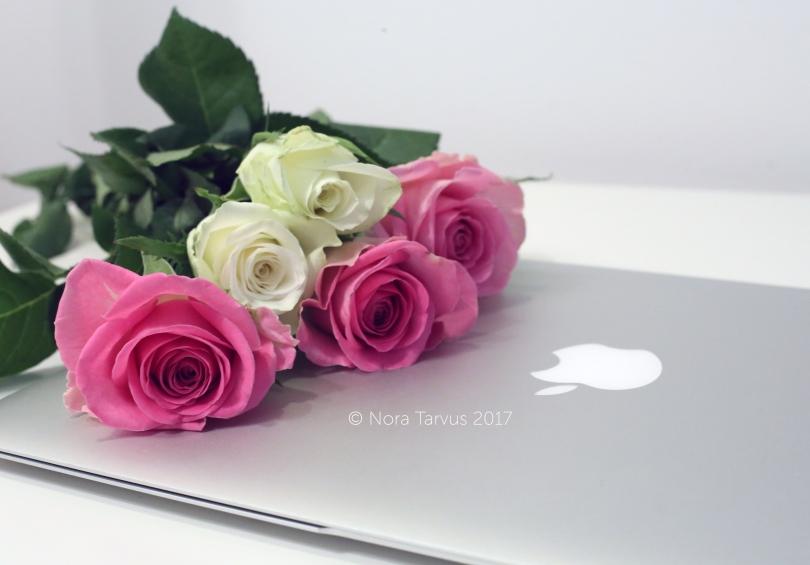 RosesandMac2
