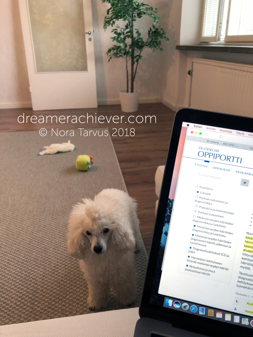 October Wrap Up 2018 Studyin with Poodle