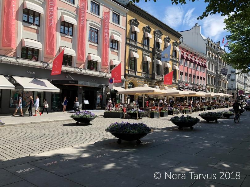 ShoppingStreetOslo