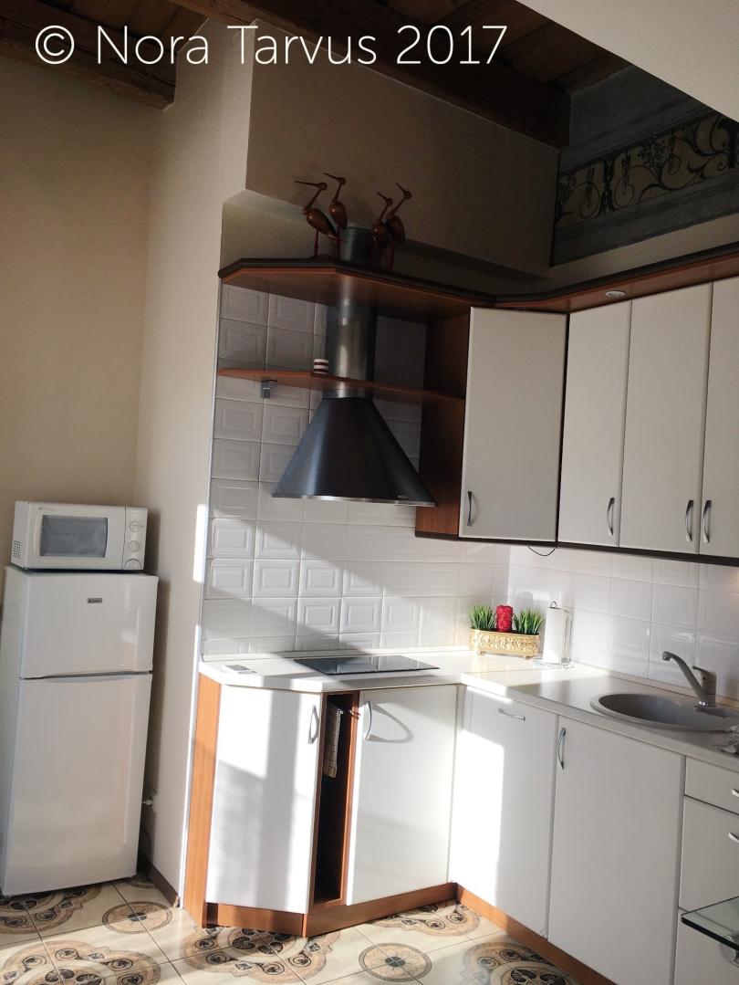 HotelSkapoApartmentVilniusReview717