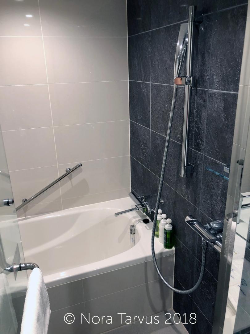 Daiwa Roynet Hotel Ginza Tokyo Japan Hotel Review 7 bath