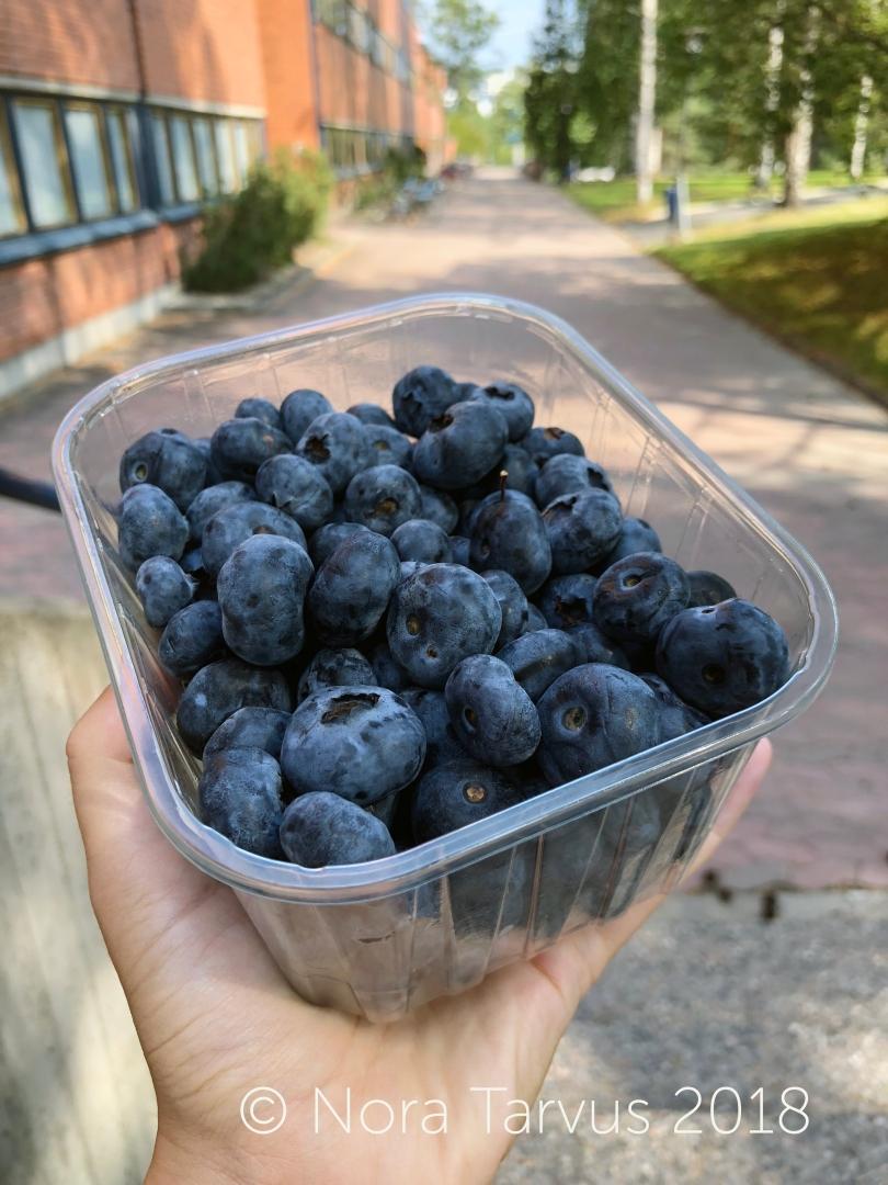 Blueberrytime