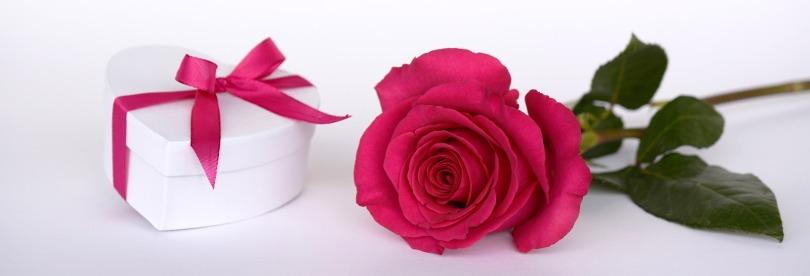 pinkrosevalentines2