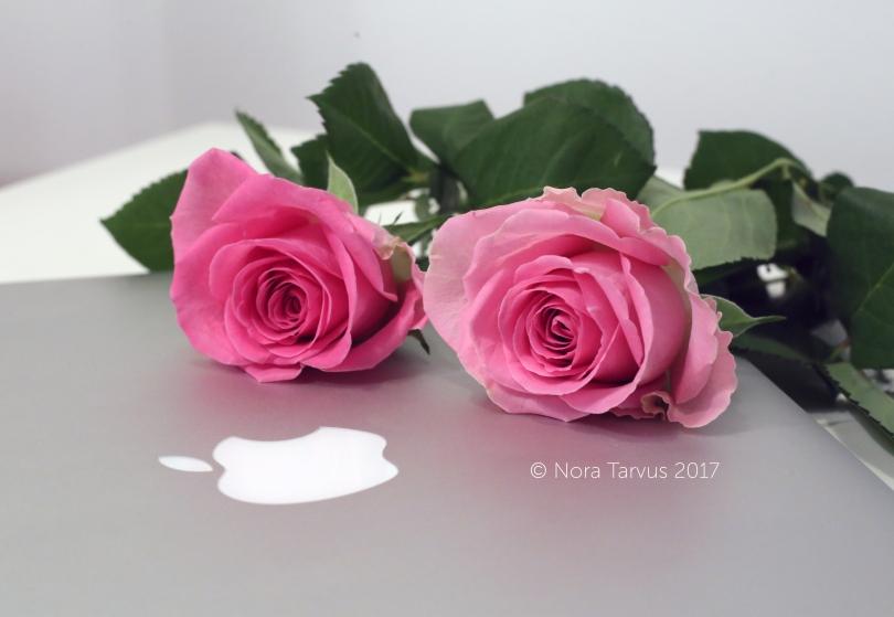 RosesandMac