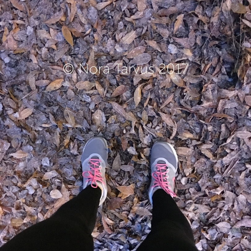 walkingduringfall