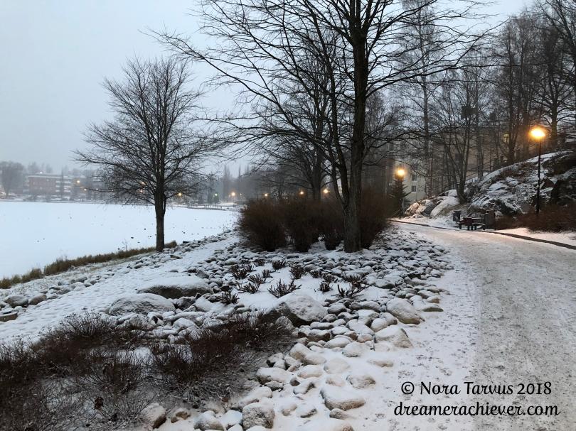 FinlandinNovember