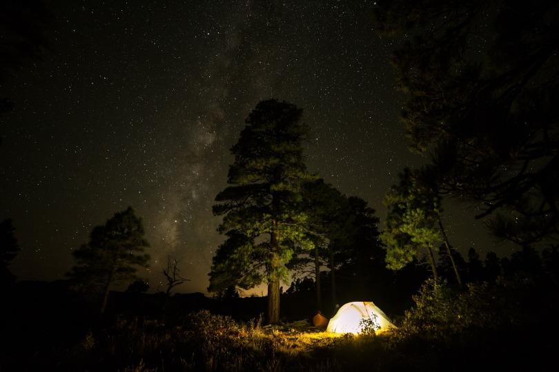 Widerness Camp